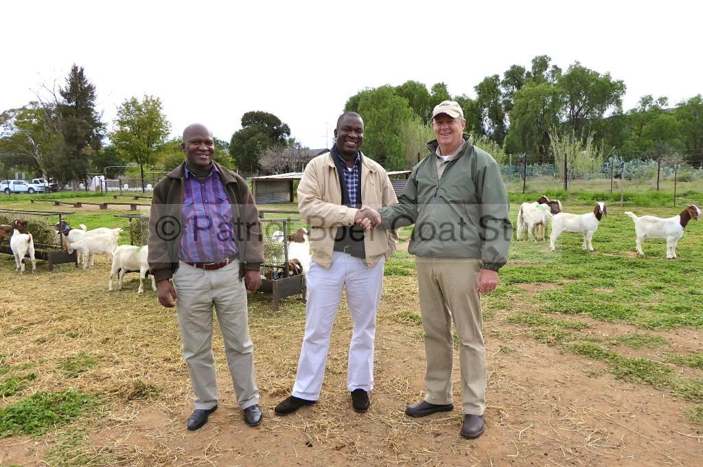 Patriot Boer Goat exports